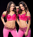 Bella Twins - wwe-divas photo