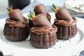 Chocolate Dessert  - chocolate photo