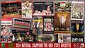 2014 NATIONAL CHAMPIONS - ohio-state-football wallpaper