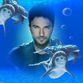 Dolphins    - tarkan fan art