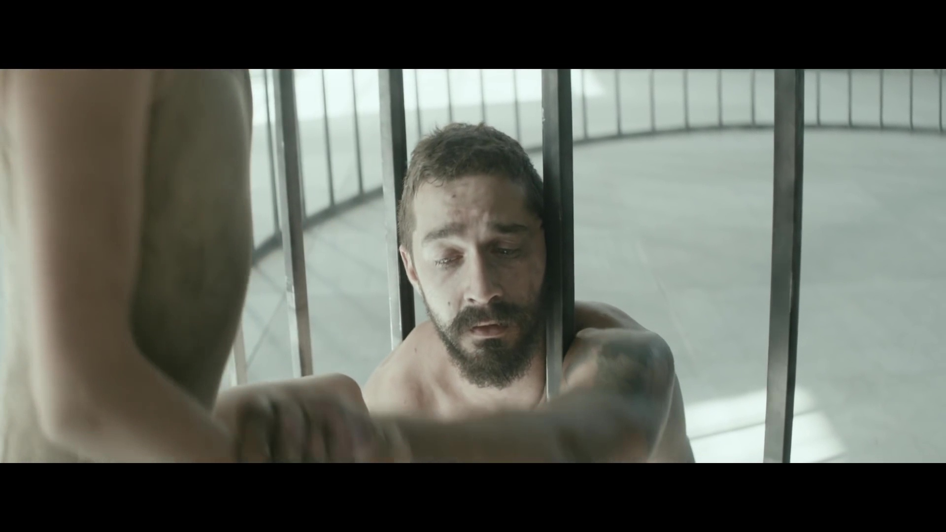 Elastic Heart {Music Video}