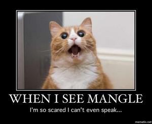 FEAR THE MANGLE