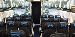 Frozen - Uma Aventura Congelante Themed Plane