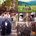 the-hunger-games - Gale Hawthorne wallpaper