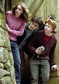 Golden Trio POA