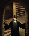 Harry James Potter - harry-james-potter photo
