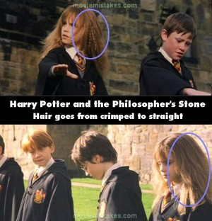 Harry Potter Faults