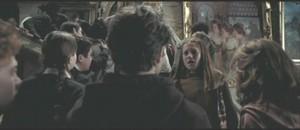 Harry Potter POA