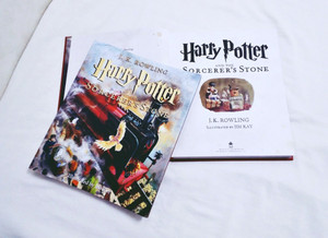 Harry Potter and the Sorcerer's Stone: The Illustrated Edition
