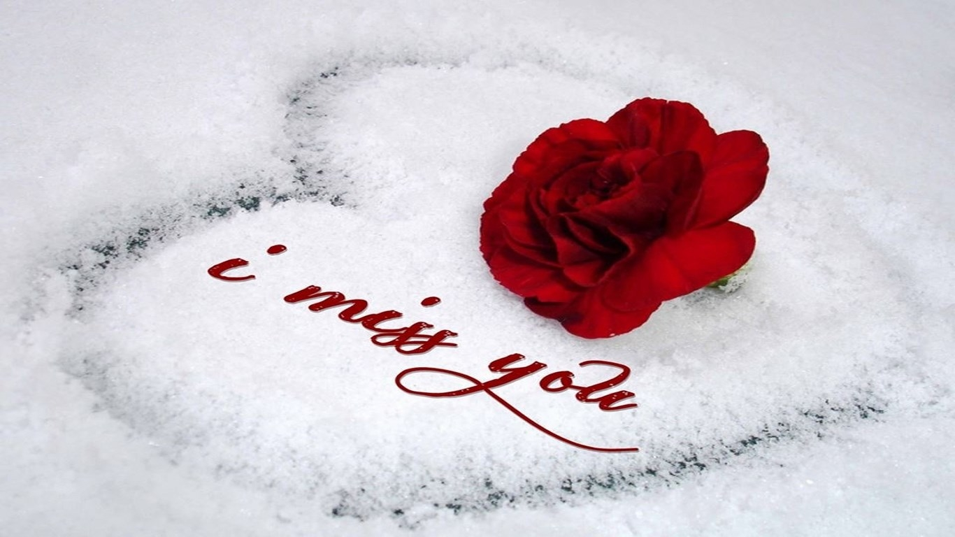Lover Wallpaper Photo : Love images Heart HD wallpaper and background photos (38931828)