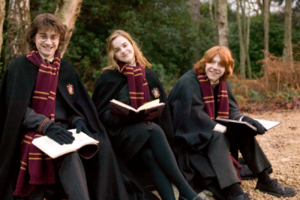 Hermione Harry and Ron