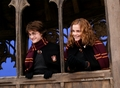 Hermione and Harry - hermione-granger photo