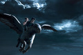 Hippogriffin - harry-potter photo