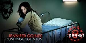 Jennifer Goines The Unhinged Genius