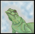 Lizard - drawing photo