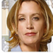 Lynette Scavo - desperate-housewives icon
