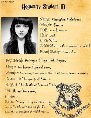 OC wallaper - Harry Potter Original Characters foto