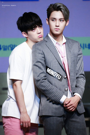 Mingyu~ seungcheol♔♥