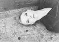 Natalie Dormer - natalie-dormer fan art