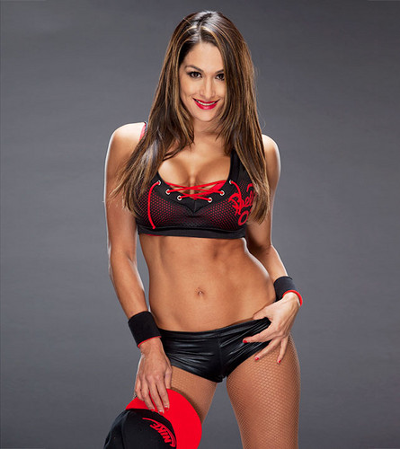Nikki Bella wallpaper possibly containing a bikini called Nikki Bella