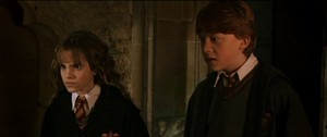 Ron and Hermione COS