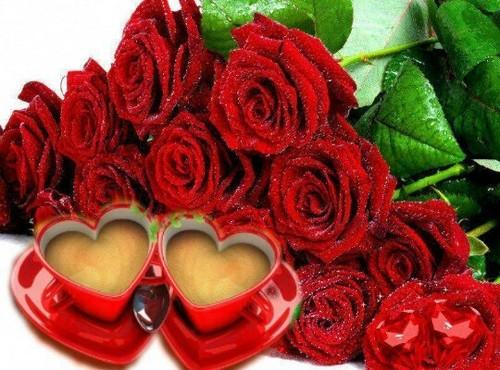 tình yêu hình nền called hoa hồng