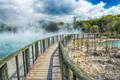 Rotorua - new-zealand photo