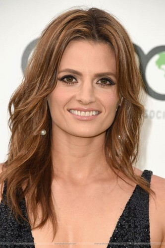 Stana Katic achtergrond containing a portrait entitled Stana Katic arrives at the EMA 2015.