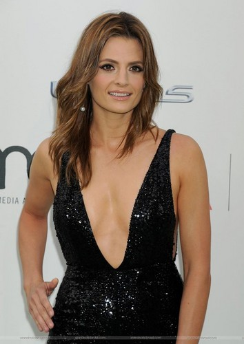 Stana Katic karatasi la kupamba ukuta possibly with a cocktail dress and a chemise titled Stana Katic arrives at the EMA 2015.