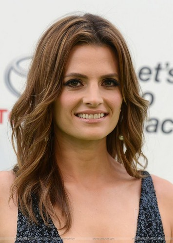 스타나 카틱 바탕화면 containing a portrait titled Stana Katic arrives at the EMA 2015.