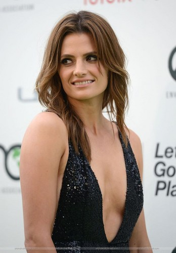스타나 카틱 바탕화면 with a portrait called Stana Katic arrives at the EMA 2015.