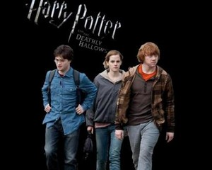Trio Deathly Hallows