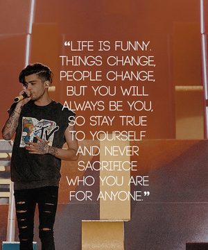 Zayn Quotes