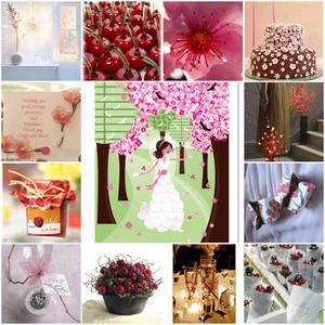 cherry theme mchoro