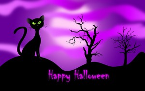 happy Halloween trees black cat fall purple hd kertas dinding 1579264
