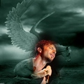 pegasus dreaming    - tarkan fan art