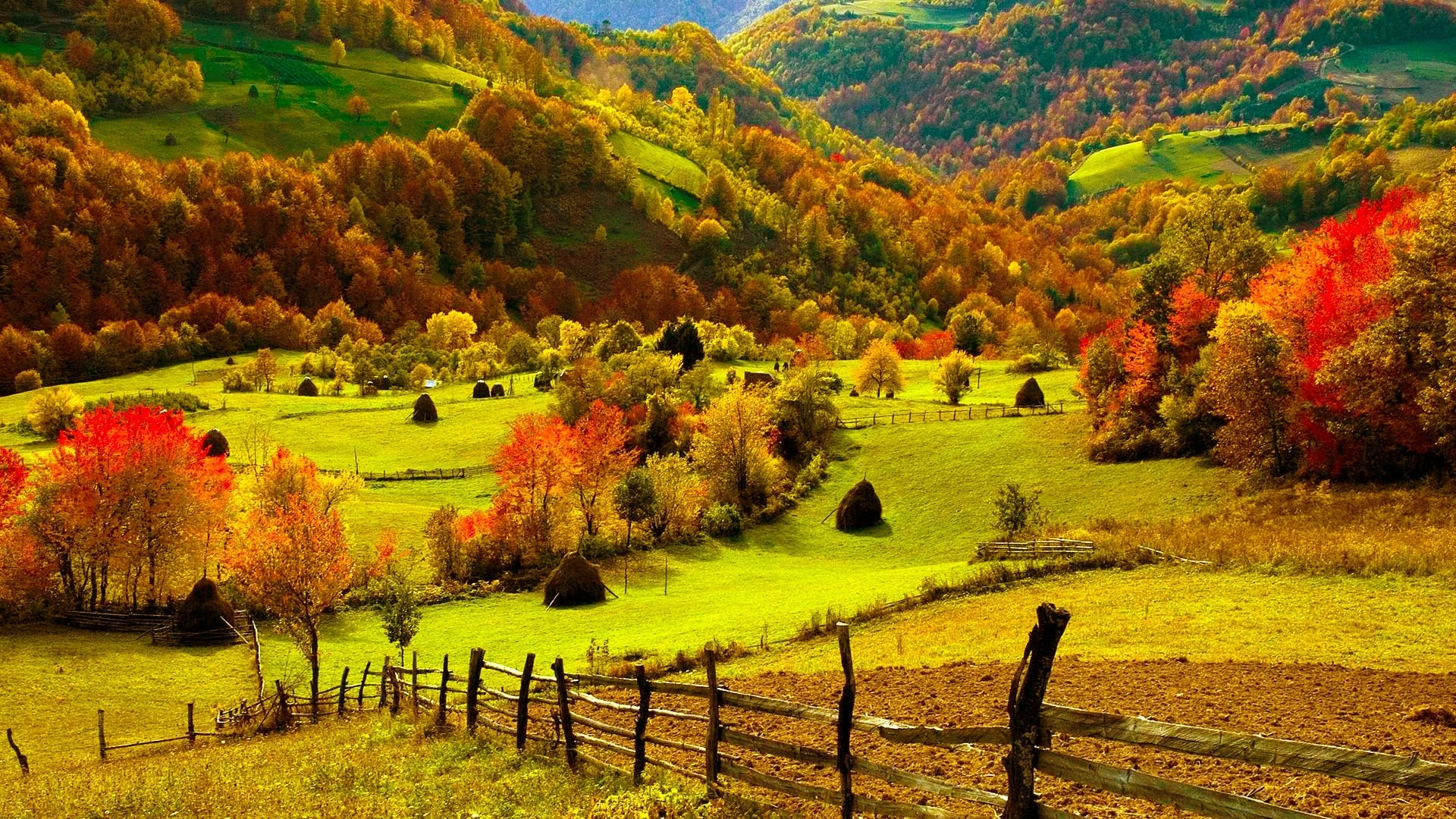 autumn images the gorgeous autumn hd wallpaper and background photos