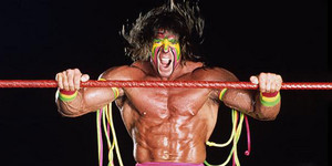 ultimate warrior elite daily1