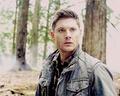 ○ Dean Winchester ○ - dean-winchester photo