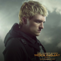 Mockingjay pt.2  - the-hunger-games photo
