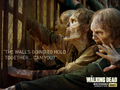 "the-walking-dead - ""The Wall's going to hold together...Can You? wallpaper"
