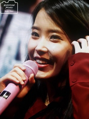 151115 IU Performance at Sudden Attack Mini Fan Meeting