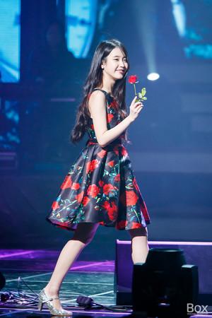151129 IU 'CHAT-SHIRE' Concert at Busan