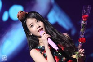 151129 IU(アイユー) 'CHAT-SHIRE' コンサート at Busan
