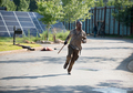 """6x05: """"Now"""" - the-walking-dead photo"""