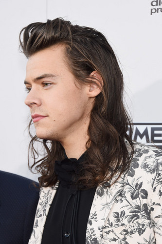 harry styles fondo de pantalla containing a portrait entitled AMA's 2015