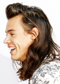 AMA's 2015 - harry-styles photo