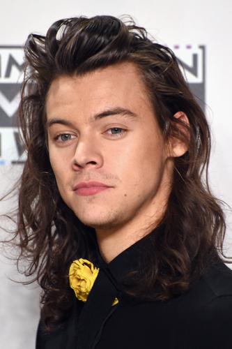 Harry Styles wallpaper containing a portrait titled AMA's 2015