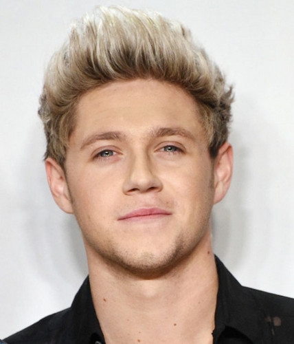 Niall Horan Hintergrund containing a portrait entitled AMA's 2015