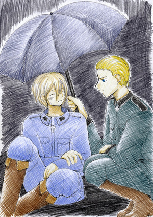 APH Protective Umbrella. Finland and Germany